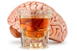 How Alcohol Affects the Hippocampus