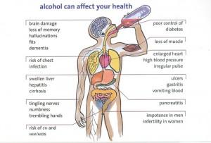 Anatomy of a hangover
